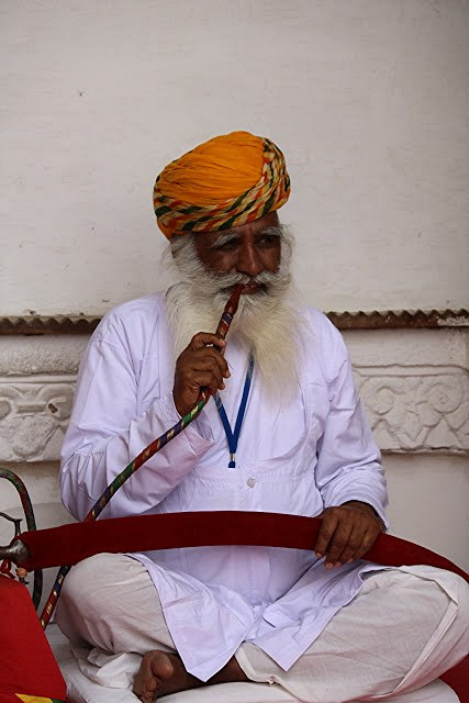 426 Jodhpur fumeur