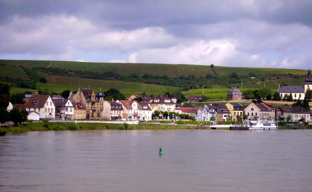 La Croisière sur le Rhin 2012 (37)
