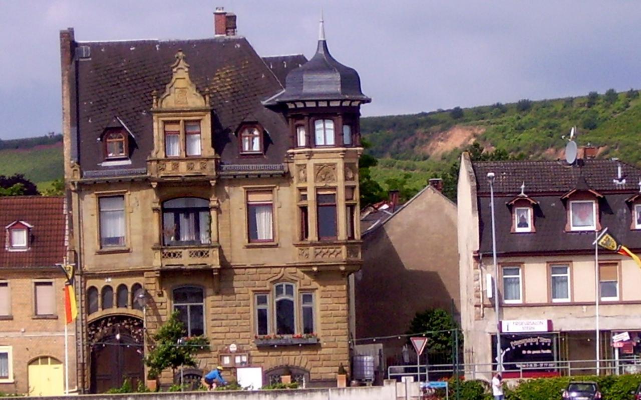 La Croisière sur le Rhin 2012 (38)