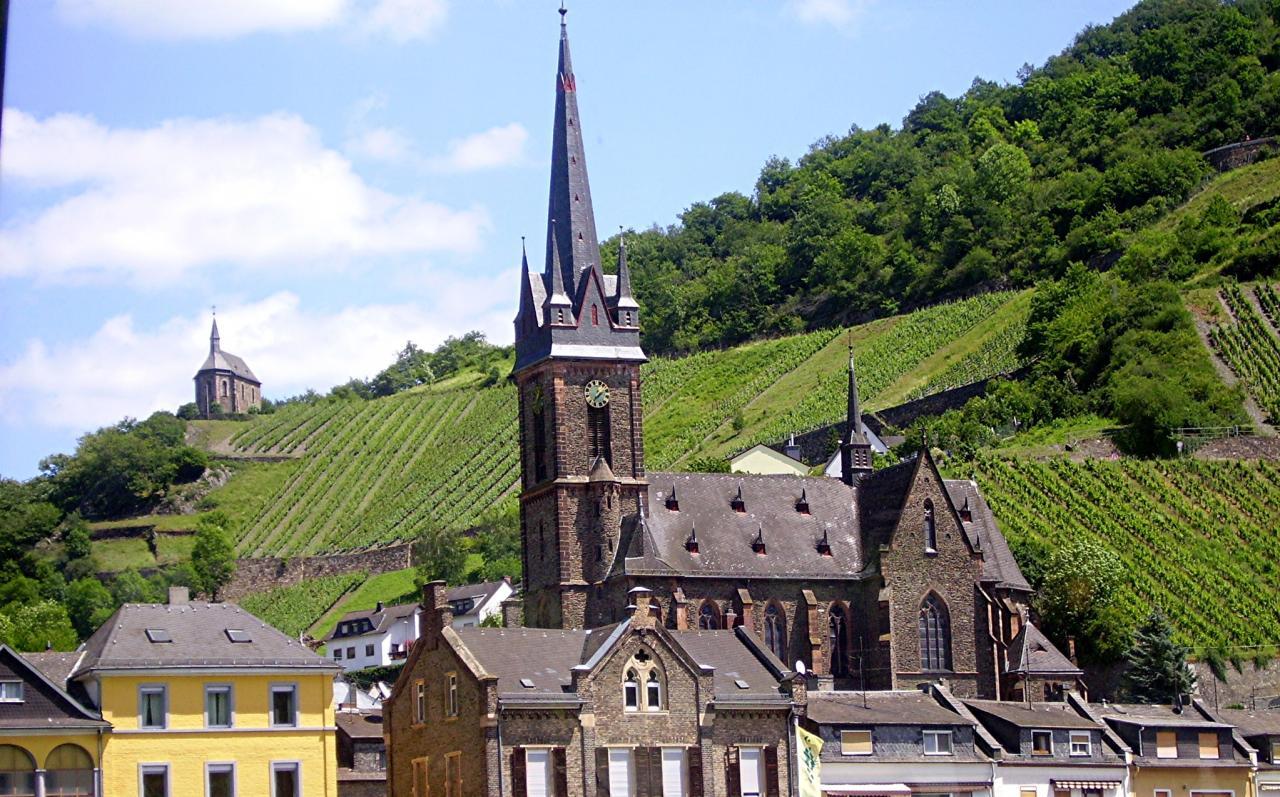 La Croisière sur le Rhin 2012 (4)