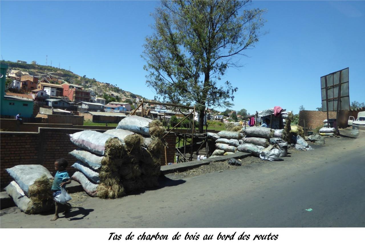P1000572.tas de charbon de bois sur le bord de la route