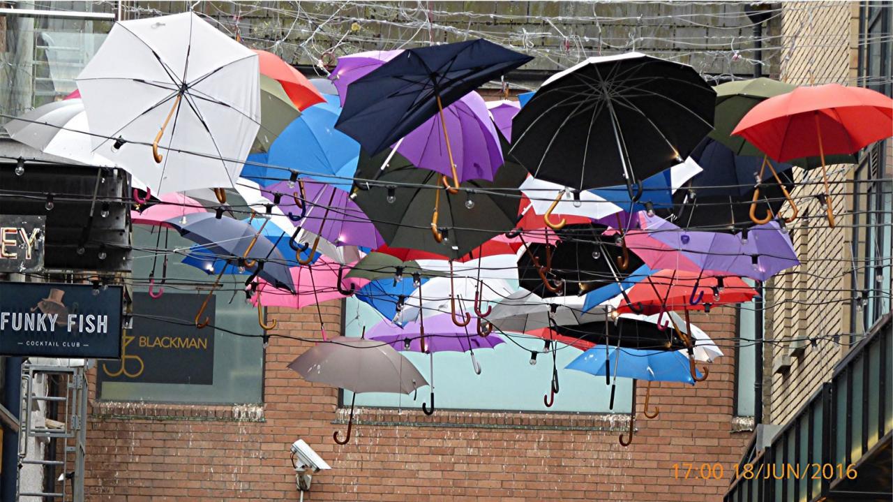P1010498Les parapluies de Dublin